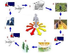 ciclo logistica